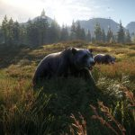 Bild von theHunter Call of the Wild