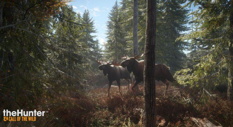 Bild von theHunter Call of the Wild (Konsole)